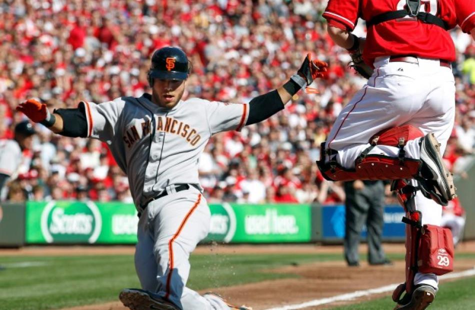 San Francisco Giants shortstop Brandon Crawford scores on Cincinnati Reds catcher Ryan Hanigan ...