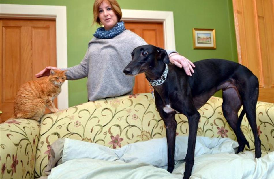 Sarah Tweedale with greyhound Gabbie and Oscar the cat at home in Dunedin this week. Photo by...