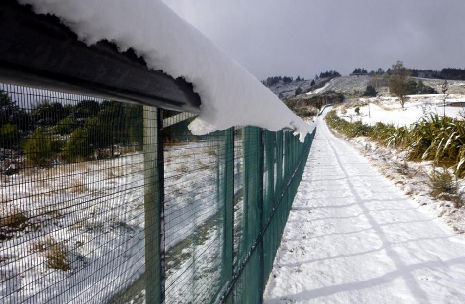 Snow build-up on the fence hood may have compromised the integrity of the fence to allow stoats...