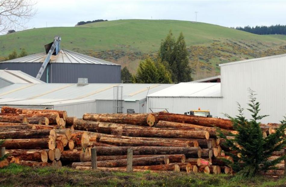Southern Cross Forest Products' Mosgiel plant. Photos by Craig Baxter.