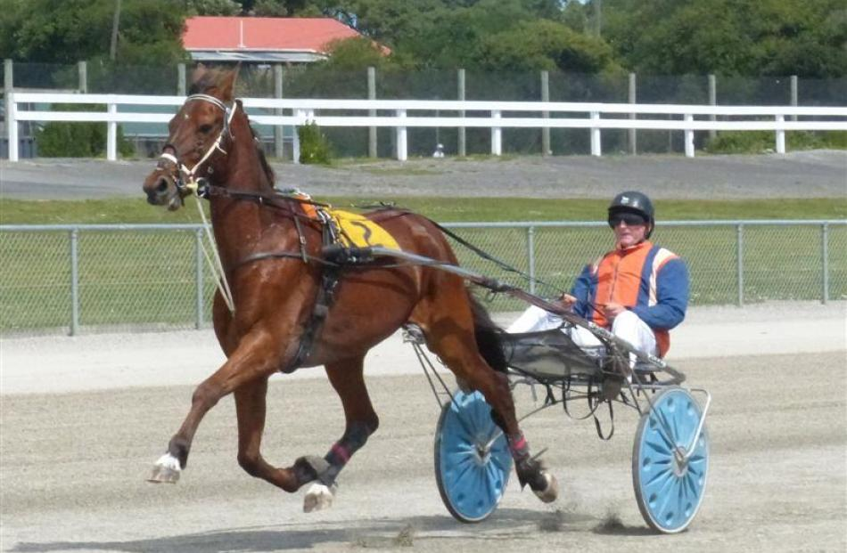Racing: Out of sulky, into saddle | Otago Daily Times Online News