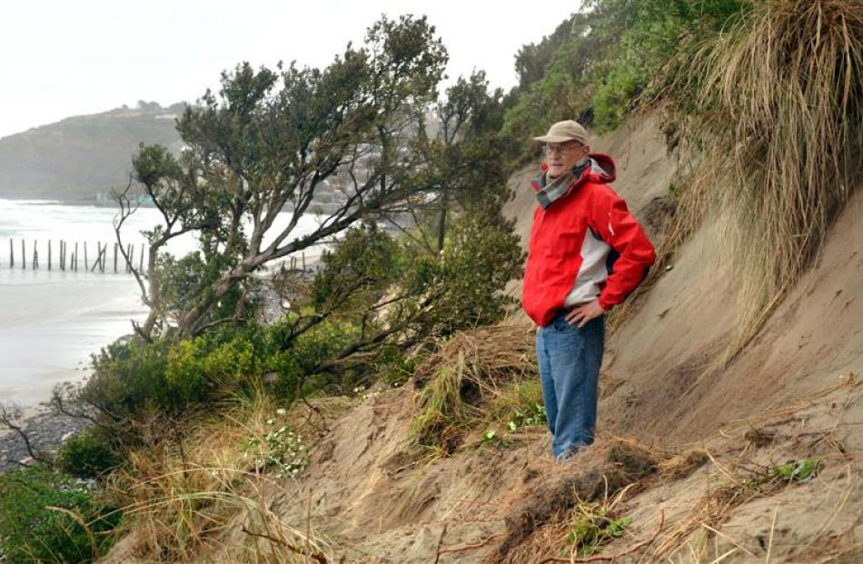 St Clair resident Bill Brown believes the area's sand dunes will vanish - and much of South...