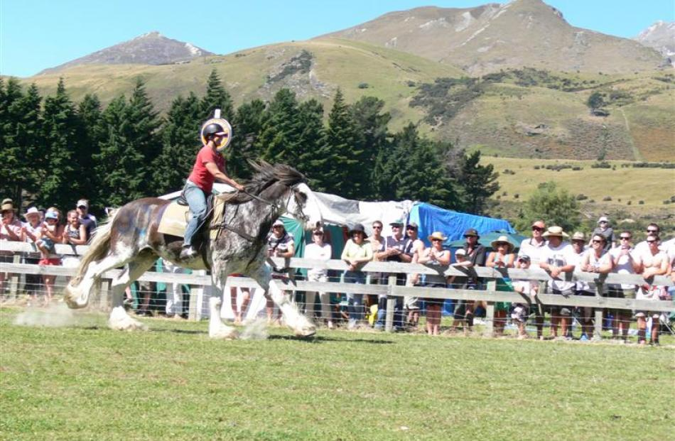 Sue Veint, of Wanaka, on Drum Major at the Glenorchy Races in 2007.  The 14-year-old Clydesdale...