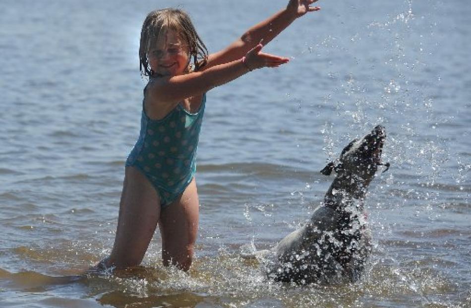 Taking a dip in Lake Waihola are Shakira MacDonald (5) and Game, of Christchurch. Photos by Craig...