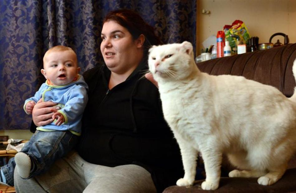 Tamara Smith with son Jaxon and cat Whitey in her South Dunedin home yesterday. Photo by Peter...