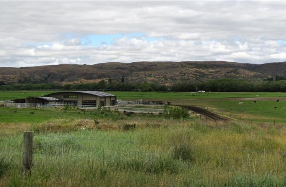 The Omakau dairy farm believed to have been bought by yachtsman Sir Russell Coutts last year....