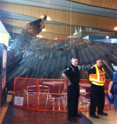The promotional 'Hobbit' eagle was shaken down in Wellington Airport. Photo Twitter (@RKPriestley)
