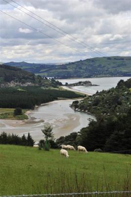 The view of Purakaunui inlet when driving from Dunedin.