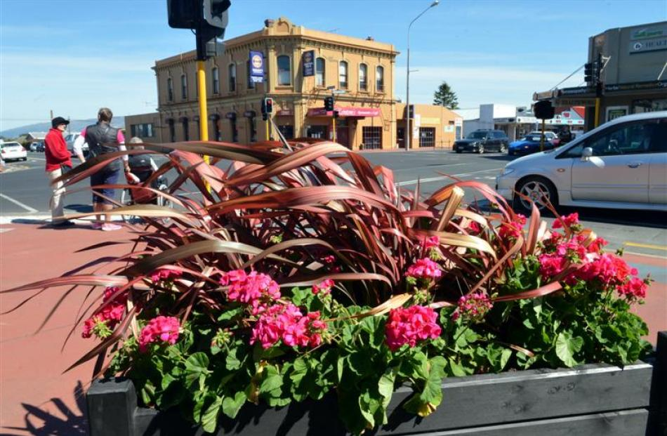 These planters in Gordon Rd cost $7000 a year to plant out and maintain. Photo by Stephen Jaquiery.