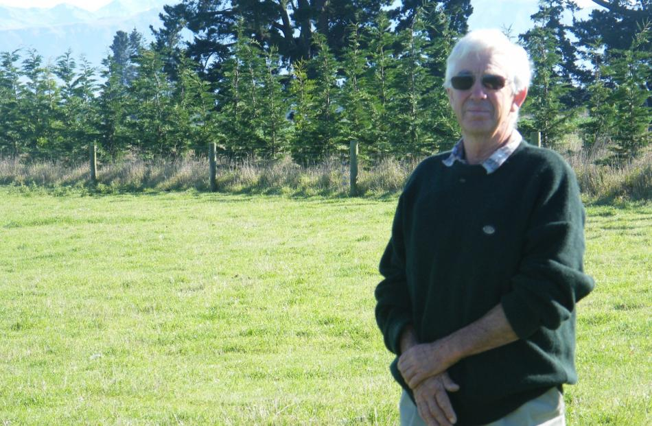 Tom Corbett is framed by leylandii trees planted in a curve to accommodate irrigators on his...