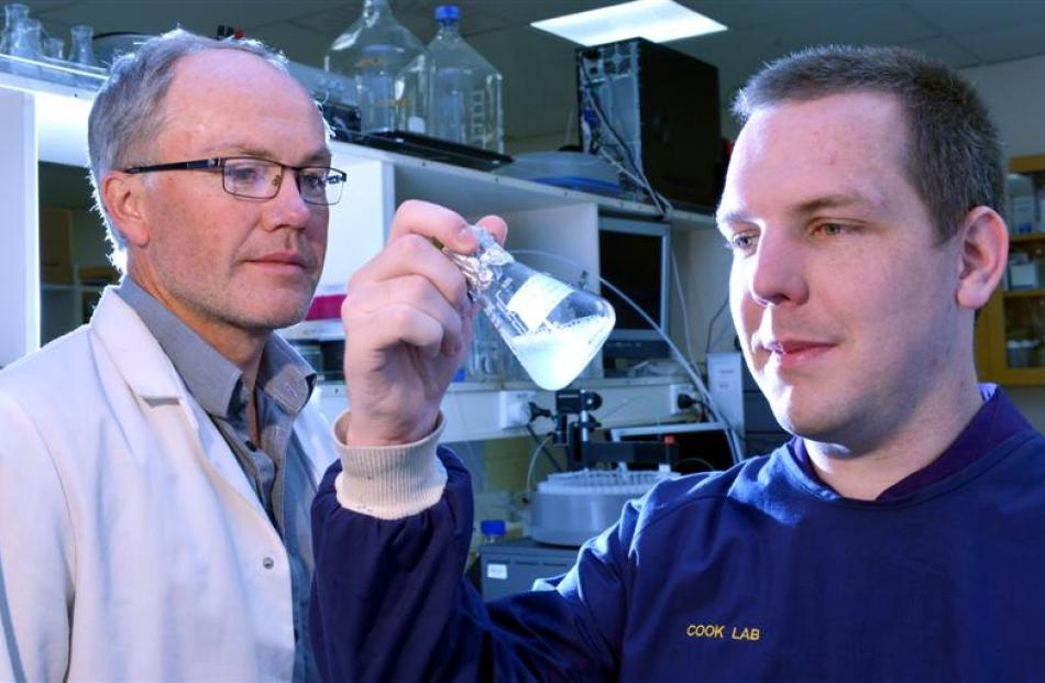 University of Otago microbiologists Prof Greg Cook (left) and PhD candidate Chris Greening...
