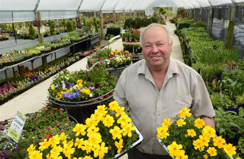Wal's Plant Land owner Clive Wallis is turning his Mosgiel business venture into a destination....