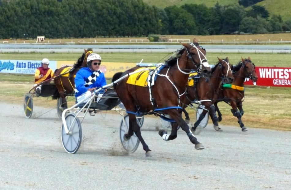 Wattie's Sweetheart wins her maiden event easily at Oamaru yesterday. Photo by Matt Smith