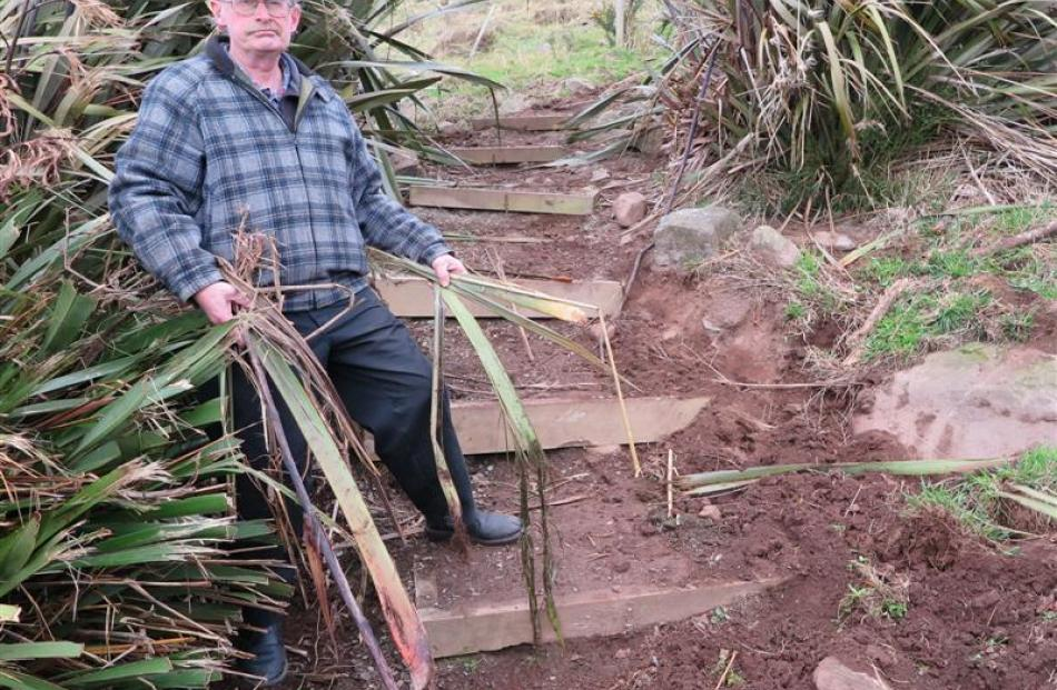 Waverley resident Wayne Allen examines the damage caused by wayward cattle on the Soldiers'...