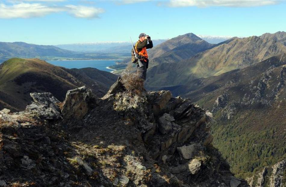 With Lake Hawea and the Hawea township well below, Wal Shuttleworth glasses for deer from a rocky...