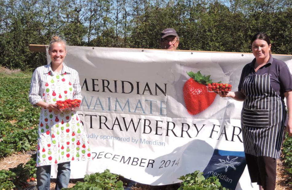 With Waimate's Strawberry Fare only a fortnight away, Butler's Berry Farm staff (from left)...
