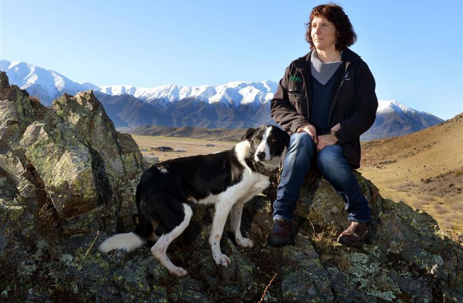 Jan Tairua and Ben at the South Island and New Zealand sheep dog trial championships at Omarama...