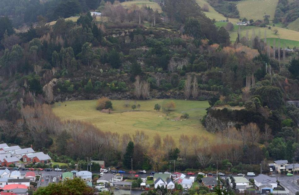 A Christchurch land owner is planning to sell part of the former Palmers Quarry Garden in...