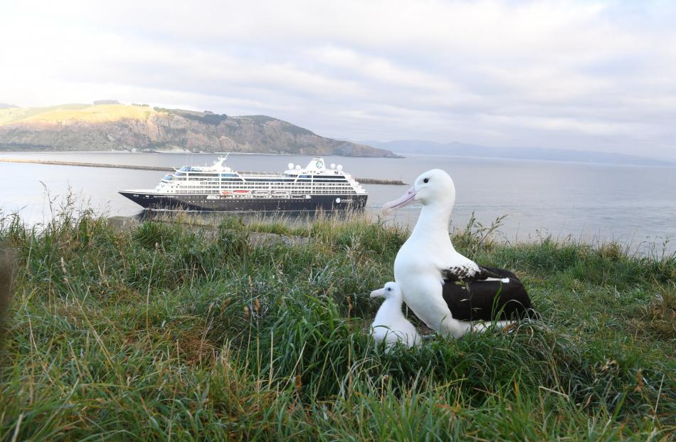 The city's focus on eco-tourism on the Otago Peninsula.