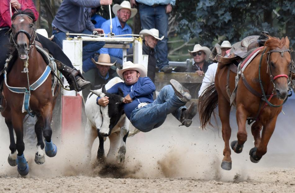 Corey Church, of Rotorua, leaps from his mount on to a steer during the steer wrestling.PHOTOS:...