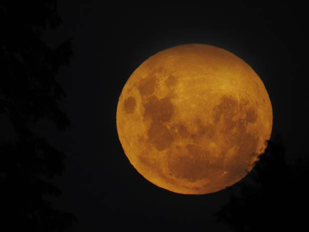 Amazing photos of super blue blood moon's eclipse from around the world