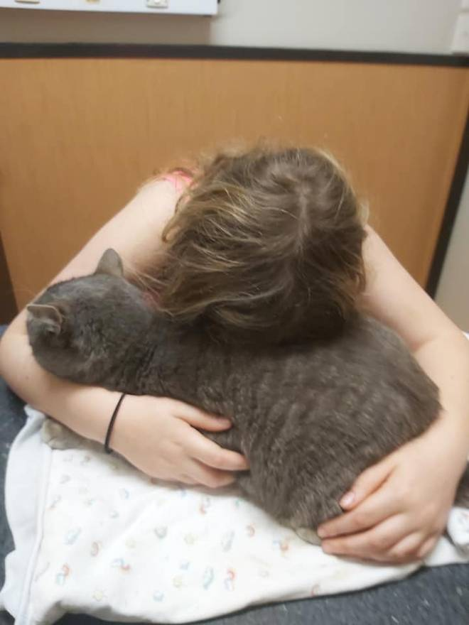Anara had to make the heart-breaking decision to put down her beloved cat Holly, after she...