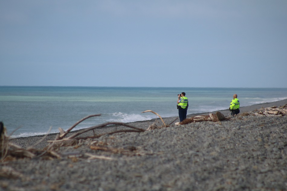 Police officers watch from the shore.